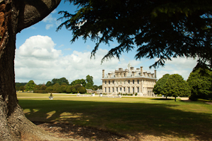 Kingston Lacy (asp100-0206)